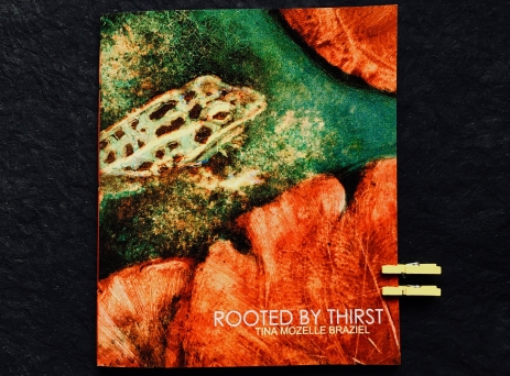 cover of Rooted By Thirst